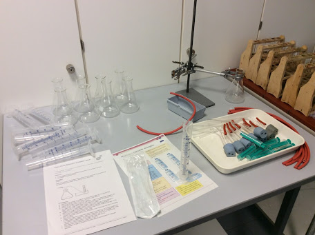 Enzyme activity practical